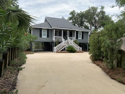 Single Family Home For Sale: 705 Sandpiper Ridge Road