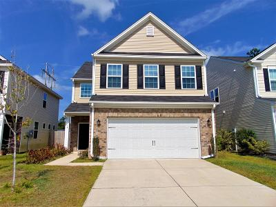 Berkeley County, Charleston County, Dorchester County Single Family Home For Sale: 218 Swamp Creek Lane