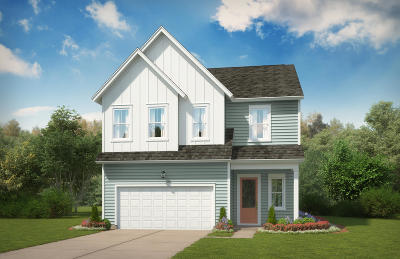 Single Family Home For Sale: 2379 Lantern Street