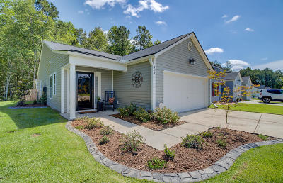 Berkeley County, Charleston County, Dorchester County Single Family Home For Sale: 124 Keaton Brook Drive