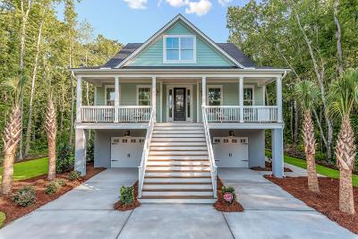 Johns Island Single Family Home For Sale: 2856 Claybrook Street