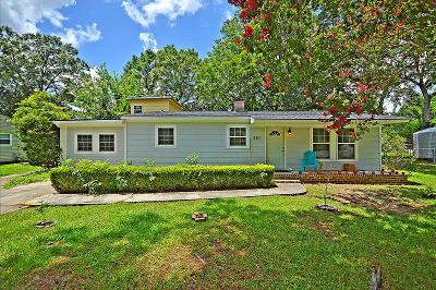 Charleston Single Family Home For Sale: 351 Cross Street