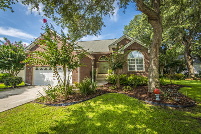 Mount Pleasant Single Family Home For Sale: 2516 Bent Tree Lane