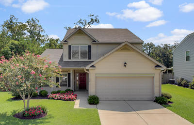 Goose Creek Single Family Home For Sale: 224 Donatella Drive