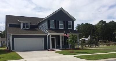 Johns Island Single Family Home For Sale: 1113 Turkey Trot Drive