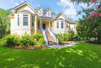 Johns Island Single Family Home For Sale: 3890 Sweetbriar Court