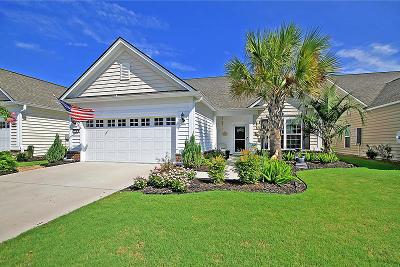 Berkeley County Single Family Home For Sale: 575 Eastern Isle Avenue
