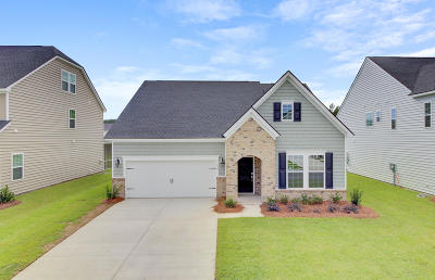 Summerville SC Single Family Home For Sale: $317,890