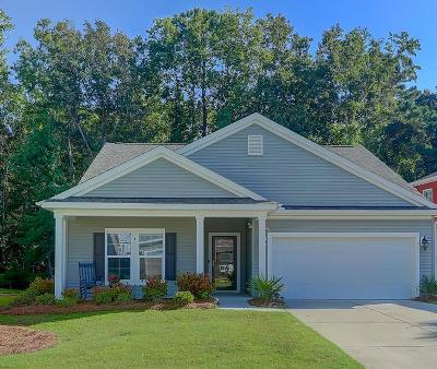 Mount Pleasant Single Family Home For Sale: 2064 Welsh Pony Drive