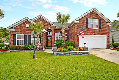 Summerville Single Family Home For Sale: 133 Carolinian Dr