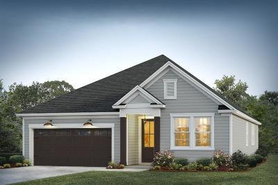 Moncks Corner Single Family Home Contingent: 310 Citation Way