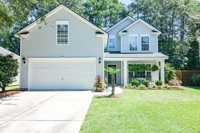 Summerville Single Family Home For Sale: 110 Moon Shadow Lane