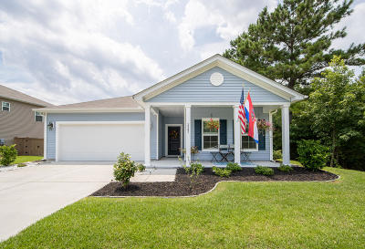 Johns Island Single Family Home For Sale: 1547 Chastain Road