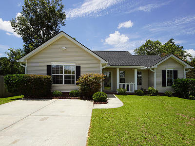 Charleston Single Family Home For Sale: 249 Mallory Drive