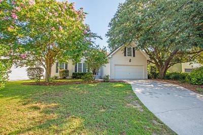 Mount Pleasant Single Family Home For Sale: 236 Alexandra Drive