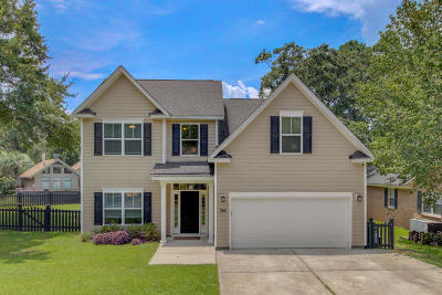 Mount Pleasant SC Single Family Home For Sale: $650,000