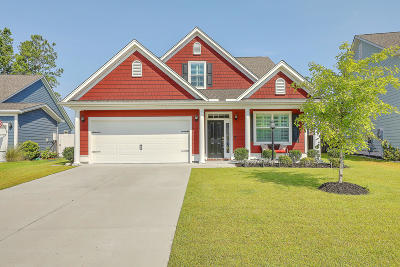 Berkeley County Single Family Home For Sale: 370 Whispering Breeze Lane