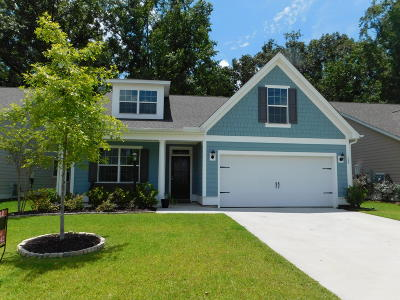 Summerville Single Family Home For Sale: 140 Longdale Drive