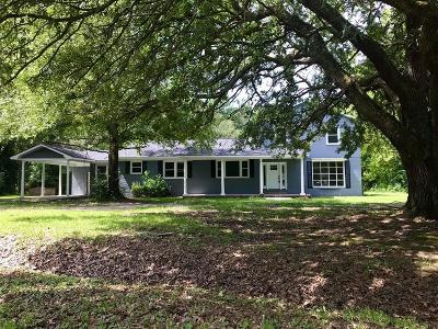 Berkeley County Single Family Home For Sale: 1027 High Hope Drive