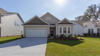 Charleston County Single Family Home For Sale: 2741 Sunrose Lane