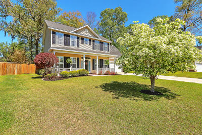 Charleston County Single Family Home For Sale: 322 Rose Marie Lane