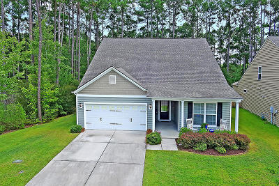 Berkeley County Single Family Home For Sale: 325 Decatur Drive