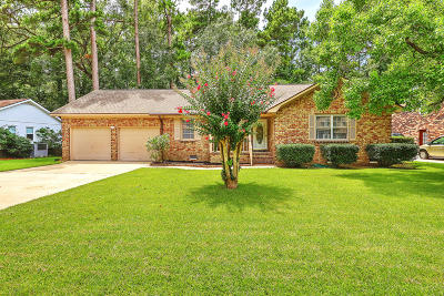 Berkeley County, Charleston County, Dorchester County Single Family Home For Sale: 107 Anstead Drive