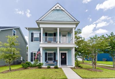 Charleston County Single Family Home For Sale: 3040 Plumier Place