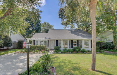Mount Pleasant Single Family Home For Sale: 1991 Armory Drive