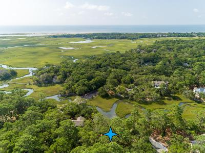 Johns Island Residential Lots & Land For Sale: 2325 Cat Tail Pond Road