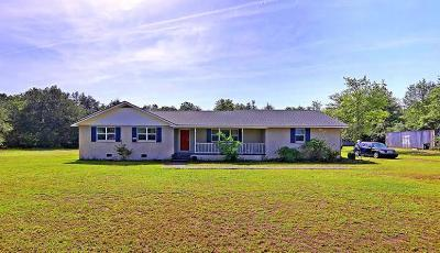 Berkeley County, Charleston County, Dorchester County Single Family Home For Sale: 437 Sandhill Road