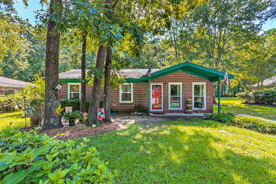 Goose Creek Single Family Home For Sale: 329 E Pandora Drive