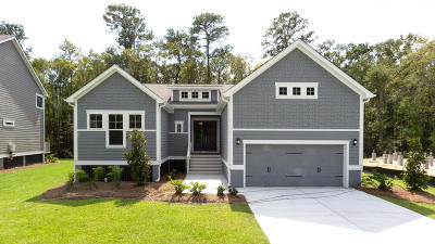 Charleston Single Family Home For Sale: 2048 Syreford Court