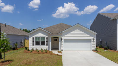 Dorchester County Single Family Home For Sale: 9644 Brandishing Road