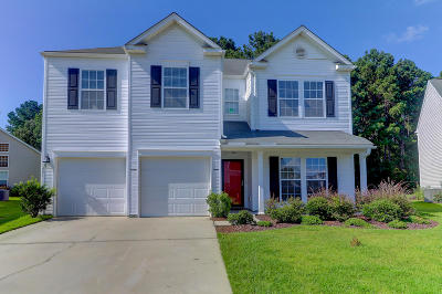 Single Family Home For Sale: 551 Pleasant Side Drive