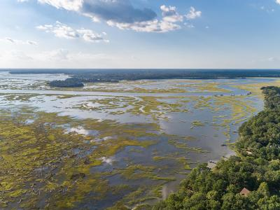 Johns Island Residential Lots & Land For Sale: 1483 Ravens Bluff Road