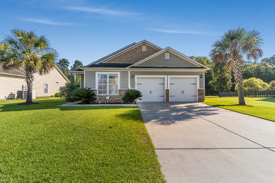 Berkeley County, Charleston County, Dorchester County Single Family Home For Sale: 227 Meadow Wood Road