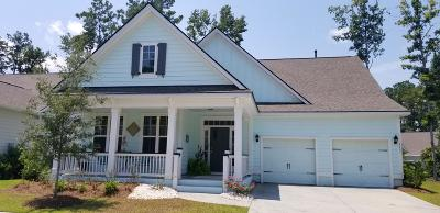 Summerville Single Family Home For Sale: 117 Phoebe Road