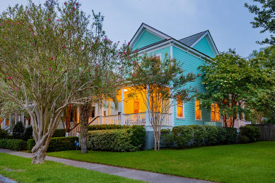 Charleston County Single Family Home For Sale: 64 Alberta Avenue