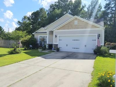 Berkeley County, Charleston County, Dorchester County Single Family Home For Sale: 207 Turtle Nest Court