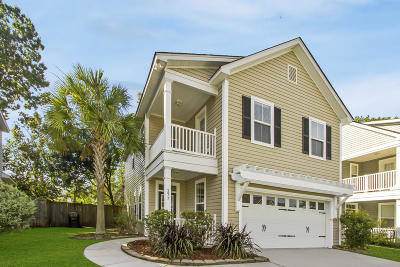 Ladson Single Family Home Contingent: 377 Chemistry Circle