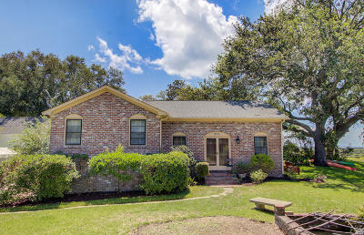 Charleston County Single Family Home For Sale: 215 King Street
