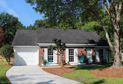 Goose Creek Single Family Home For Sale: 108 Ceinwein Court