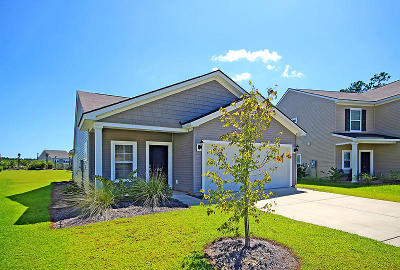 Goose Creek Single Family Home For Sale: 102 Chaste Tree Circle