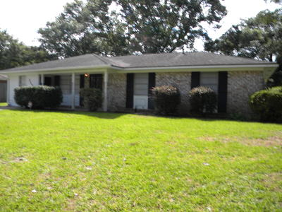 Goose Creek Single Family Home For Sale: 113 Stewart Street