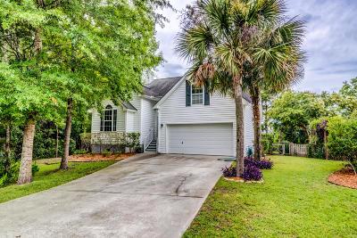 Mount Pleasant Single Family Home Contingent: 359 Kingston Lane