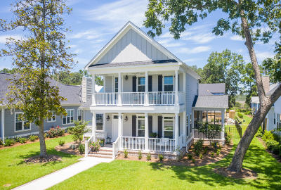 Single Family Home For Sale: 4079 Egret Perch Court
