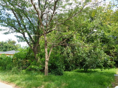 Residential Lots & Land For Sale: 2231 Easton Street