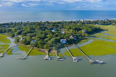 Folly Beach Single Family Home For Sale: 1006 Sea Crest Lane