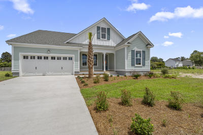 James Island Single Family Home For Sale: 1506 Charming Nancy Road